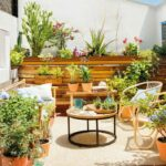 Hogar terraza plantas