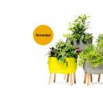 Productos jardineria plantas