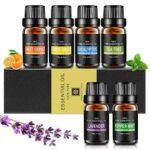 Aceites Esenciales Aiemok Aromaterapia Essential b07qfqgwh8